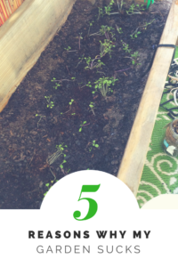 5 Reasons My Garden Sucks