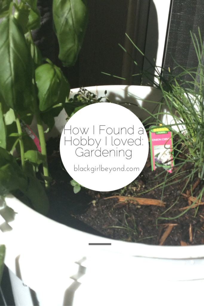 How I Found a Hobby I loved: Gardening