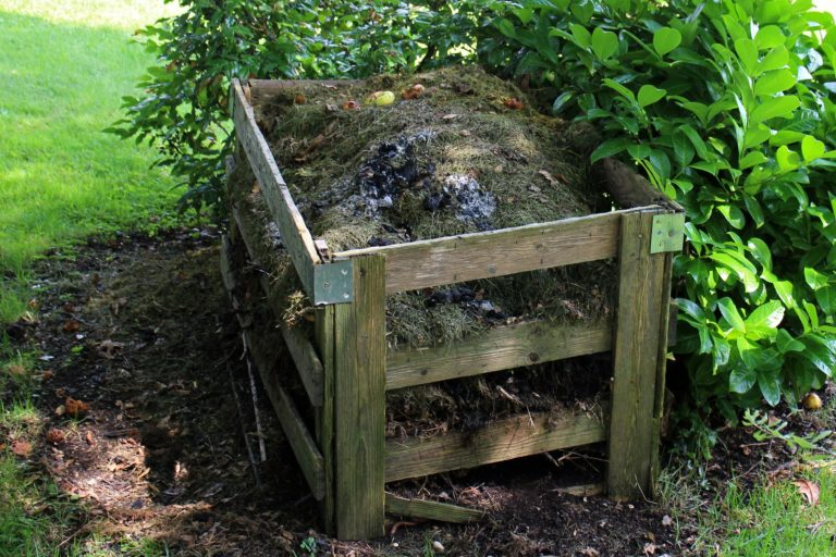 50 Things You Can Compost
