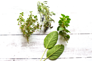 10 Best Herbs to Grow Indoors